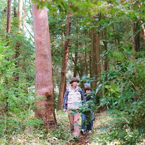 森林ウォーキング
